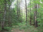 Building lot near Adirondacks for sale NY