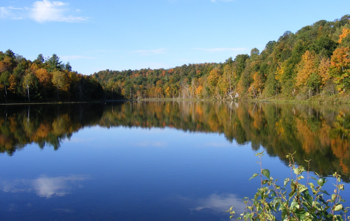 Beautiful Pond View on land for sale