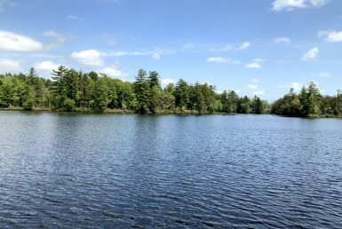 9 acres on Carterville Pond Amboy NY