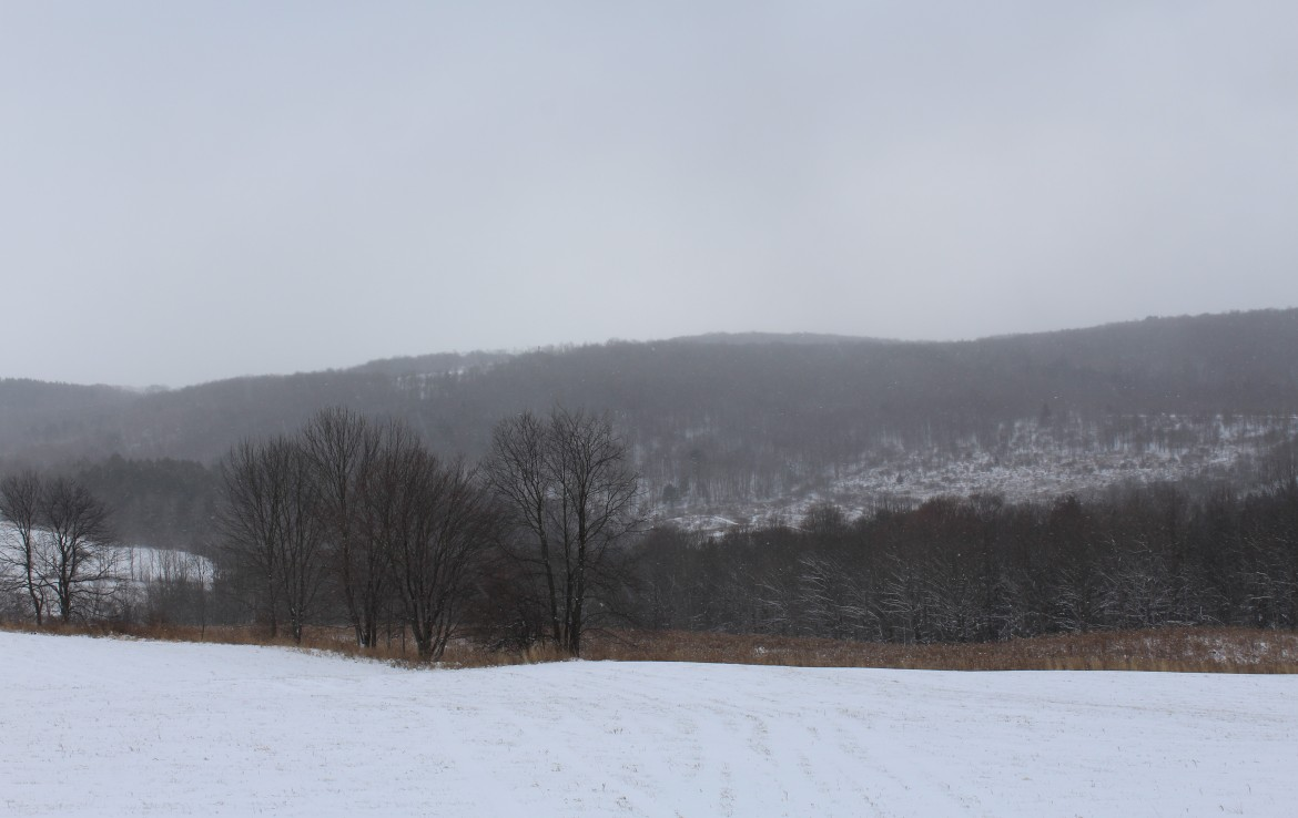 Building site in Chenango County for sale
