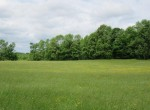 34 acres farm land for sale with beautiful hillside! NY