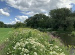 House and Livestock Farm on 212 acres land for sale!