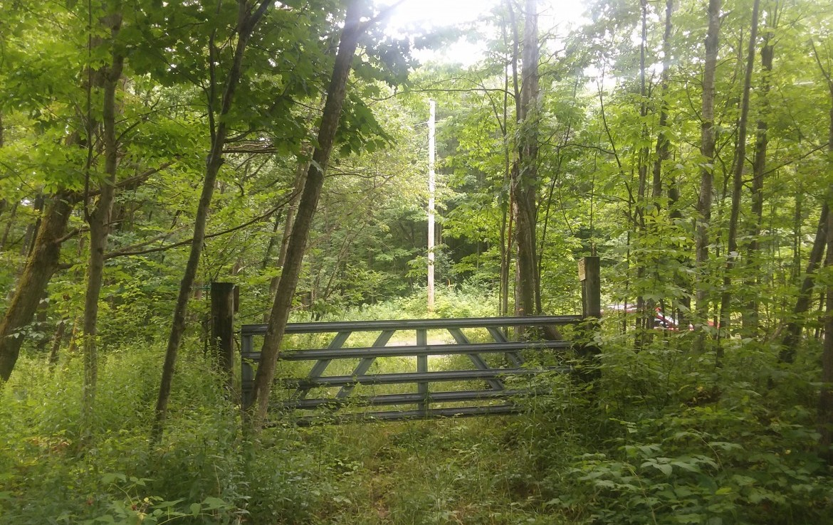 45 acres land for sale. Wooded  and one of Madison Counties prime deer hunting tracts!