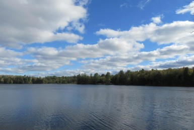 Ideal waterfront building parcel Constantia NY