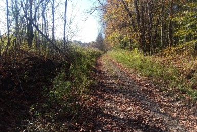 Hunting Land for Sale New York State!