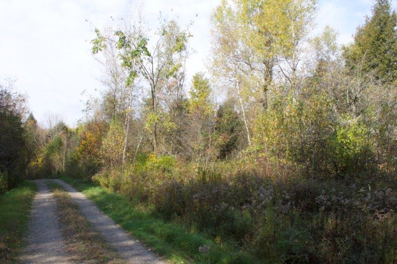 Recreational land for sale with Owner Financing