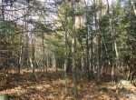 Recreational land for sale upstate NY