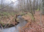 Pristine Woodlot and Hunting Land for sale