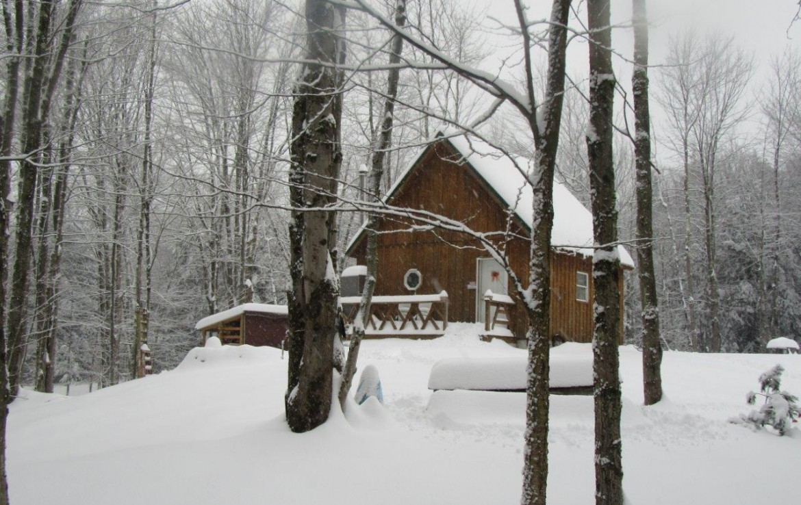 41.95 acres Cabin for sale with Owner Financing available!