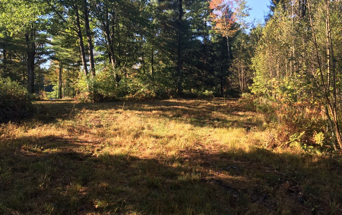 Building Lot for sale Louisville NY