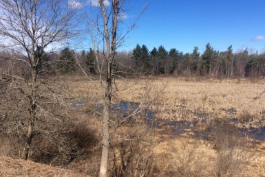 99 acres Hunting and ATV Land Croghan NY