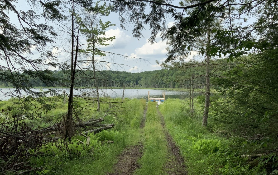 80 acres Hunting Land on Fritz Pond Parish NY