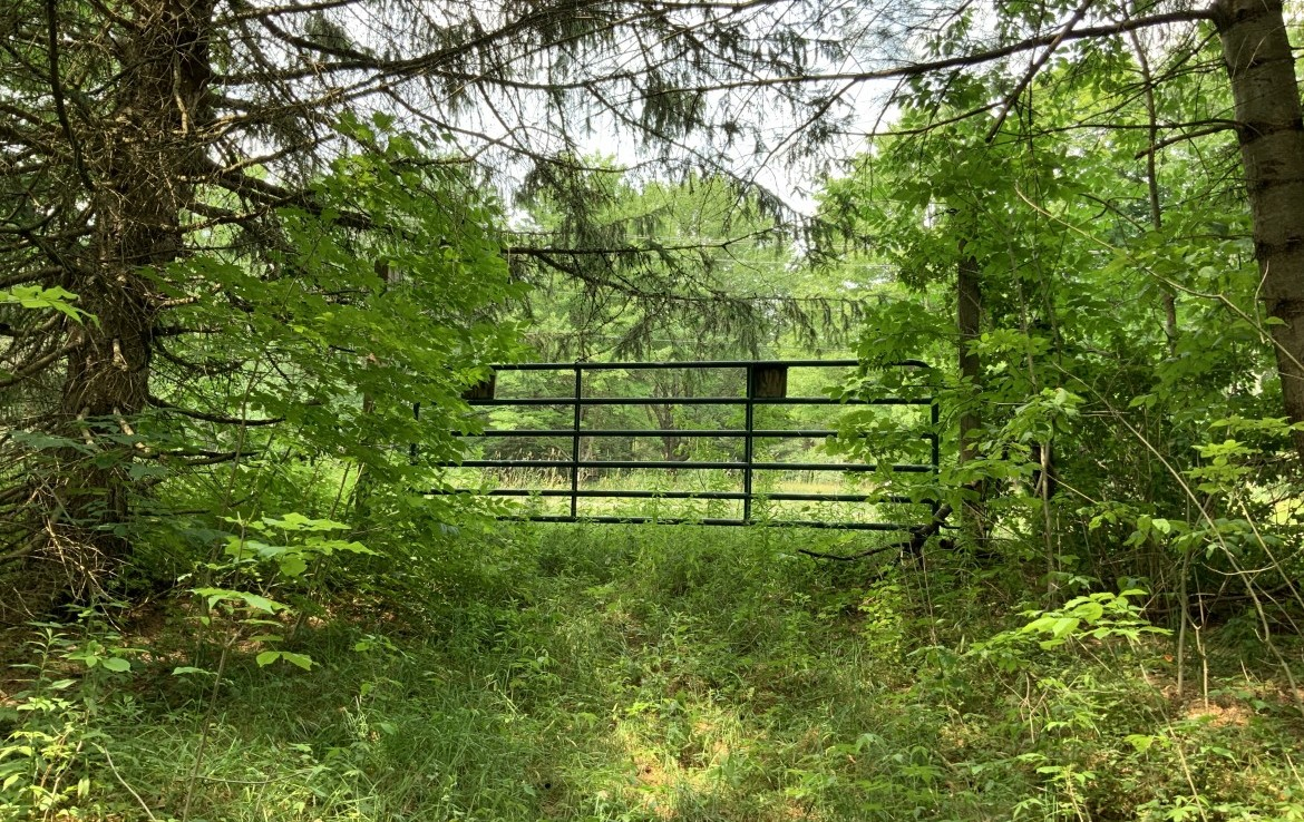 61.44 acres Hunting Land for sale with electric in Parish, NY!