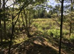This property is a great land deal!