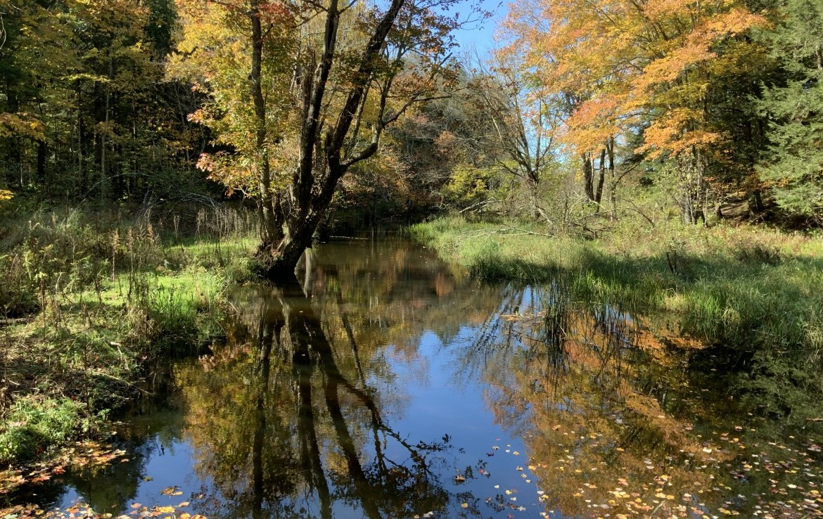 63 acres Year-Round Hunting Cabin for sale on Little River!