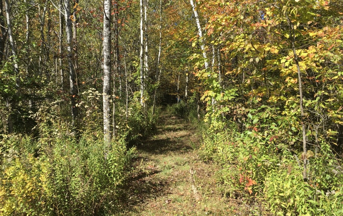 located on a secluded dead-end road where there is also access to thousands of acres of state easement lands