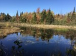 Adirondack land is the perfect place for a camp in the north woods