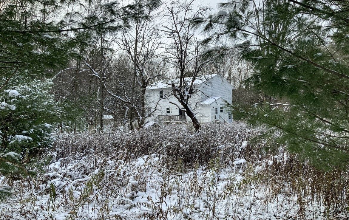 104 acres Hunting Land