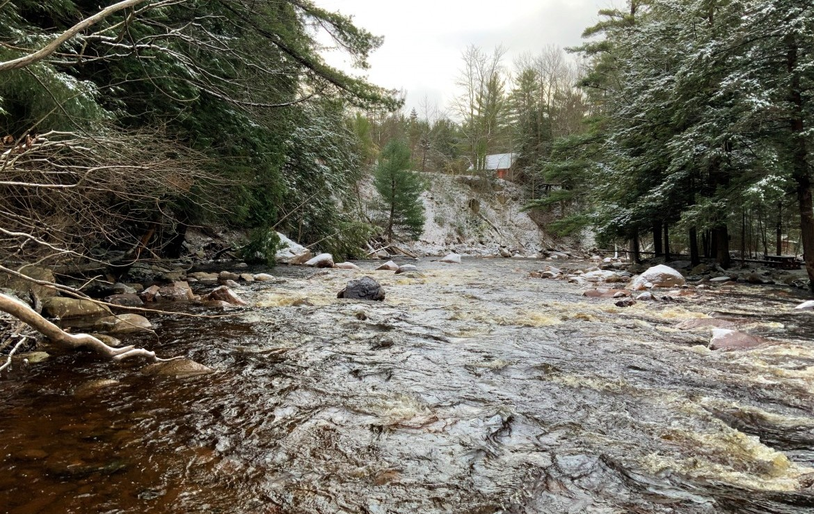 8 acres Cabin on Independence River Watson NY