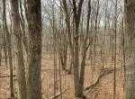 77 acres of prime fishing and hunting land bordering state land!
