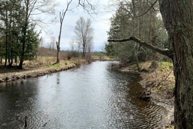 28 acres On Little Salmon River Parish NY