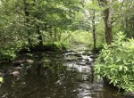 170 acres of Land for Sale with Cabin, Clinton County, NY!