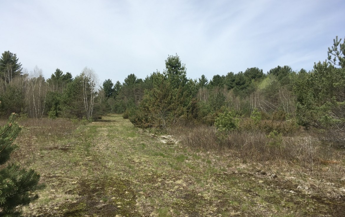 20 acre Riverfront Land For Sale, Pitcairn NY!