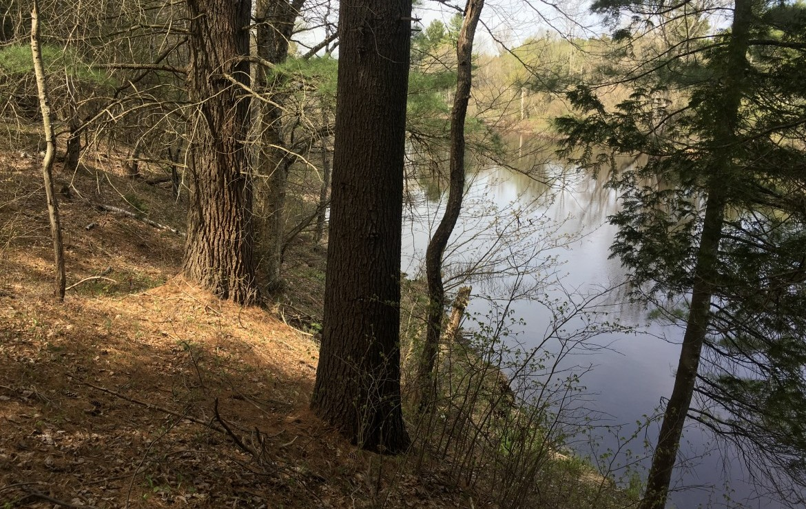 Building Lot with 350 Feet of Water​frontage on The Oswegatchie River!