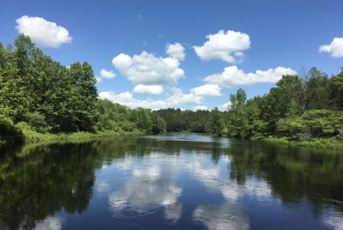 450 Acres Riverfront With Private Pond Russell NY