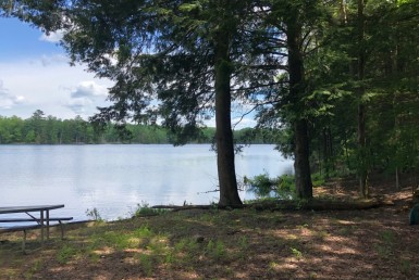 6 acres Waterfront on Francis Lake Constantia NY
