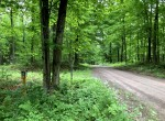 13.4 acre Hunting Land and Camp for Sale in Lorraine, NY!