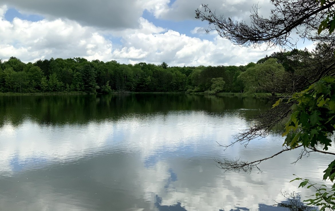 ​158 acre Land for Sale with 7 acre Deep Water Pond, Tioga, NY!