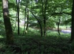 1.8 Acre Riverfront Property on the Saint Regis River, Parishville NY!
