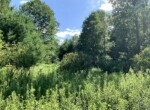 19.5 acres Northern Zone Hunting Land for Sale, Florence, NY!