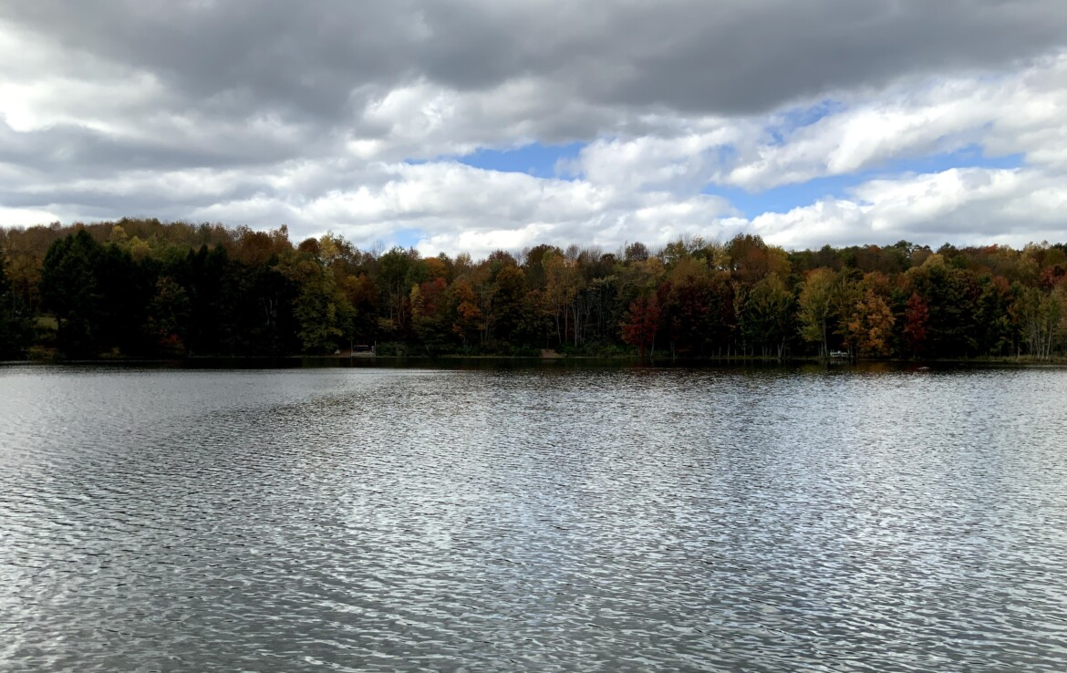 8 acres Lakefront Land for Sale on Beaver Meadow Lake, Smyrna, NY!