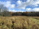 50 acres NY Southern Tier's Best Hunting Tioga NY
