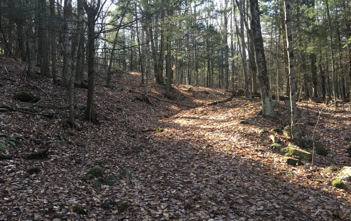 15 acres of Wooded Hunting Land for Sale in Hermon, NY!