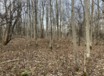 16 acre Buildable Land for Sale in Potsdam, NY!
