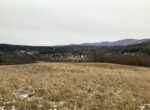 204 acres with 2 Fixer Upper Houses Grand Gorge NY