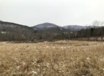Catskill Mountain Hunting Land with Country Home or Rental!