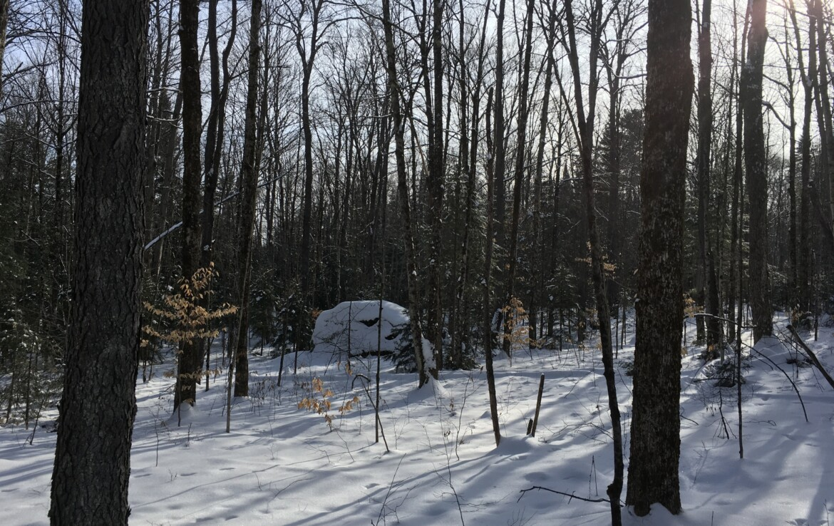 Adirondack Recreational Land on Paved Rd with Power Available!