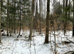 5 acres Woodland Building Site Williamstown NY