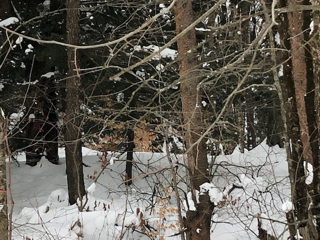 5 acre Camp/Building Lot for Sale Near Salmon River, Williamstown, NY!