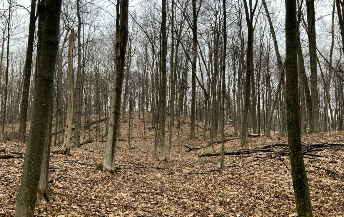 10 acres with Clear Building Site Electric Available Annsville NY