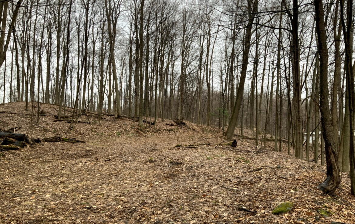 10 acres Land for Sale with Cleared Building Site, Annsville, NY!