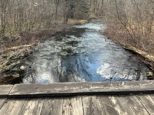 60 acres Hunting Land for Sale Near Salmon River, Albion, NY!