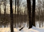 10.78 acres Hunting Land and Unfinished Camp Brookfield NY