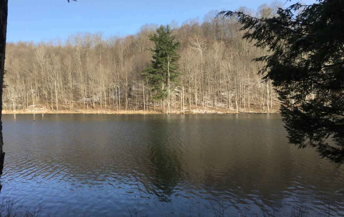 19 Acre Waterfront Hunting Land Hermon NY