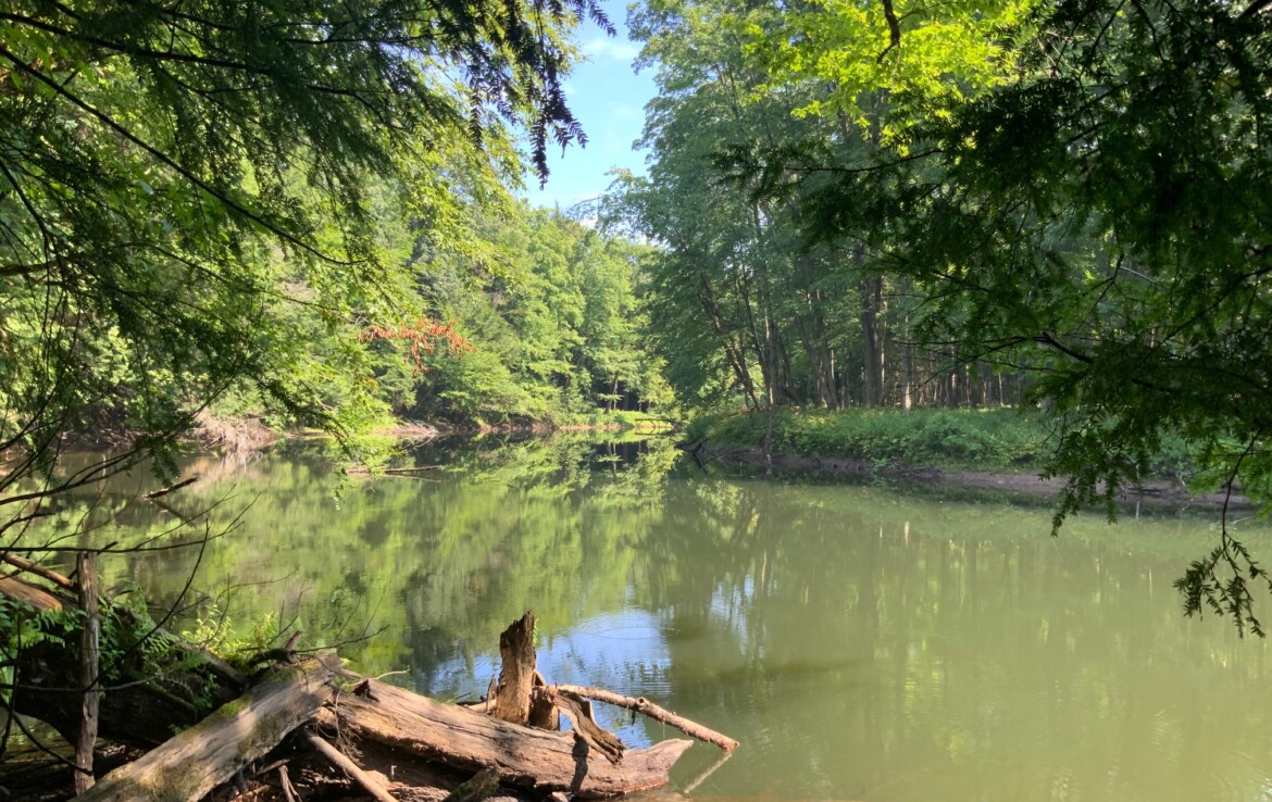 6 acres Waterfront Land For Sale on Fish Creek, Vienna, NY!