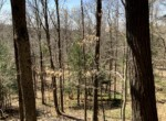 5 acres Land for Sale, Ideal North Country Cabin/Homesite, Trenton, NY!